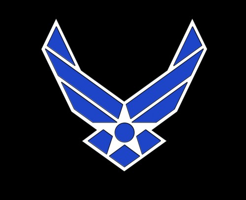 black us airf force logo